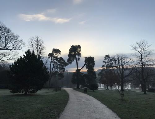 Winter Wonders at Wadhurst Castle Cottage